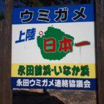 続 屋久島